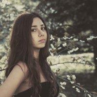 Весенний портрет :: Павел Никаноров
