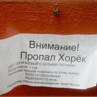 В Подмосковном городе Люберцы. :: Ольга Кривых