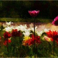 Майские цветы :: Станислав Лебединский