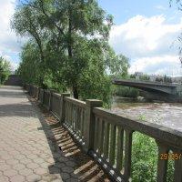 Мост через р. Омь :: раиса Орловская