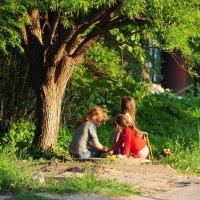 лето :: Лисяна •