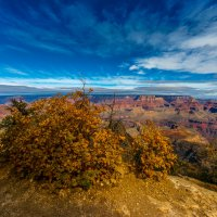 Grand Canyon(3) :: Gregory Regelman