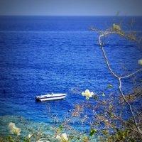Глубокое синее море :: Ксения Базарова
