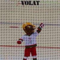 Волат (символ чемпионата мира по хоккею) :: Kate Bahdanovich