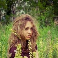 девушка в поле :: Dmitriy Predybailo