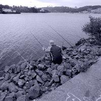 Утро  на  рыбалке :: Ростислав