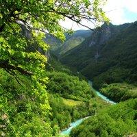 Дороги Адриатики. Шедевр Европейской Природы - каньон реки Тара - самый глубокий в Европе... :: Леонид Нестерюк
