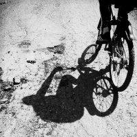 Велопрогулка :: Анастасия Болюбаш