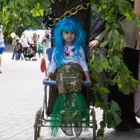 Парад колясок. :: Елена Миронова