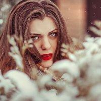 зимняя :: Катерина Порядочная
