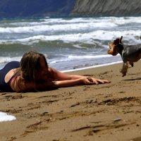 Собачья радость :: Геннадий Валеев
