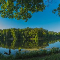 Ботанический сад. :: Максим Шоркин