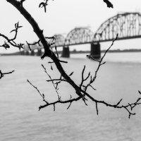 ЖД мост,р.Зея :: Михаил Белоусов