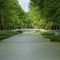 Мостики Александровского парка :: Светлана Шарафутдинова