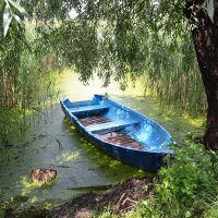 SPA-салон для лодочки))) :: Svetlana Kravchenko