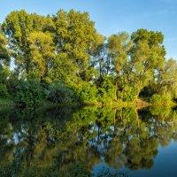 Река Сакмара :: Александр Кислицын