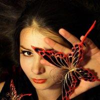 Бабочка :: Наталья Иванчикова