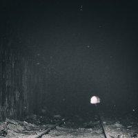 Свет в конце тонеля... :: Vladimir Zhavoronkov