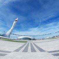 Сочи, Олимпийский парк :: Алина Филимонова