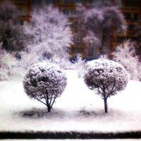 Весенняя зима :: Marat G