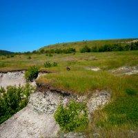 Экспедиция на Буданову гору. :: Лариса Коломиец