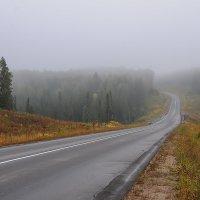 дорога, уводящая в туман :: Galina