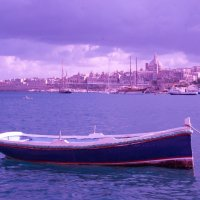 мальтийская лодочка :: Jekaterina K