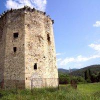 Чоргуньская башня :: Zinaida Belaniuk