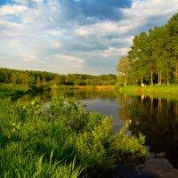 Теплый вечер на реке :: Татьяна Копосова