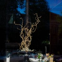 Окно в кафе. :: Валерий Молоток