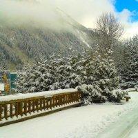 Зимний пейзаж :: Наталья Богданова