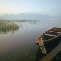 Утро на Бородаевском озере :: Валерий Талашов