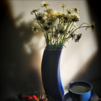 Весеннее утро :: Татьяна Кретова