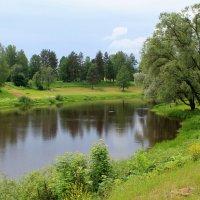 Павловск, начало лета :: Наталья Лунева