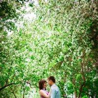 Цветущий сад :: Анастасия Костюкова