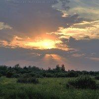Склонилось солнце над землею :: D. Matyushin.