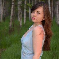 прогулка в березовой роще :: Ольга Ершова