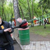 Игры :: Наталья Золотых-Сибирская