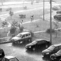 Летний дождь :: Алексей Окунеев