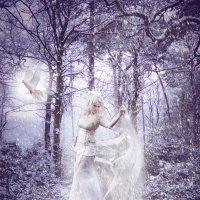 Зима :: Светлана Волконская