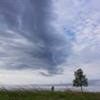 Июньский ветер :: Александр Бобрецов