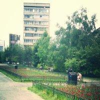 зеленая аллея с тюльпанами :: Юлия Маслова