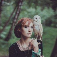 Owl :: Марта Май