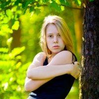 сказочный лес :: Георгий Греков