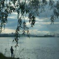 на природе :: Дмитрий Тырышкин