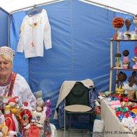 Культурная олимпиада НСО 2014 :: Наталья Золотых-Сибирская