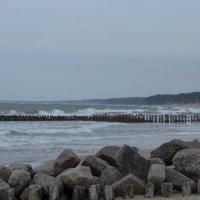 Балтийское море. :: Михаил ИСАЕВ