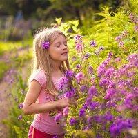 Аромат полевых цветов :: Юлия Соболева