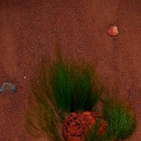 Морской этюд :: Лёха Дидус
