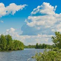 Летняя река. :: Виктор Евстратов